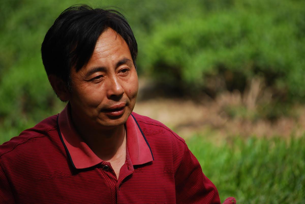 mr. deng, tea producer