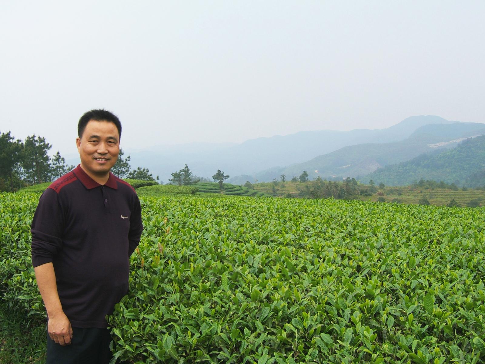 M. Zhang, producteur dans le Fujian (Chine)